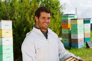 Beekeeper carrying box of honeycomb frames