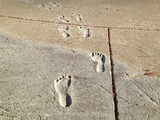 indelible footprints 2