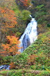 Waterfall in autumn, Nanataki, Akita, Japan