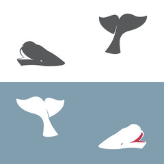 Vector image of an whale