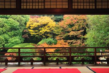 紅葉の日本庭園