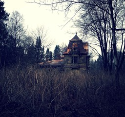 Old house in the park
