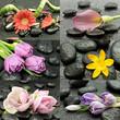 Kwiaty z kamieniami do spa