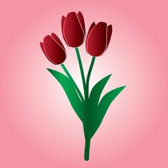 red tulip flower eps10