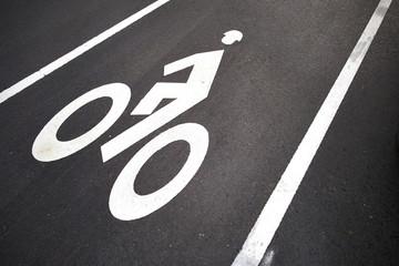 Bicycle Lane harvard cambridge