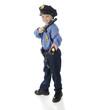 Small Shining Police