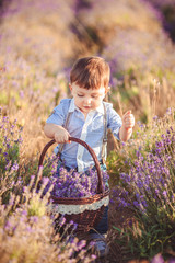 Little fashionable boy having fun in lavender summer field.
