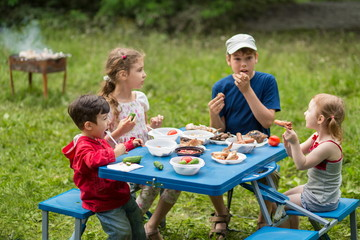 children eat meat with vegetables at picnic on pembroke table