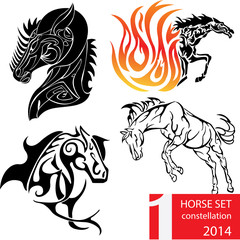Sets of constellation horse,zodiac horse