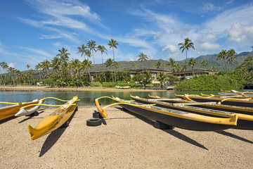 USA-Hawaii-Oahu-8116