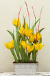 Floral arrangement of yellow tulips