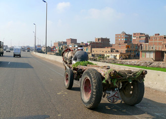 CAIRO, EGYPT - NOVEMBER 9, 2008: An unknown man riding in a carr