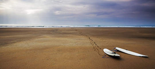 Surfboards beach landscape - surfing art panorama