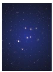 Constellation Ara