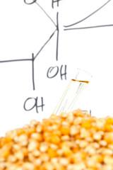 Biofuel process