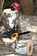 Chainsaw, safety equipment and cutting tree