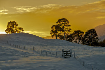 Setting winter sun over snowy fields