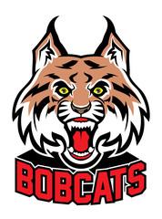 bobcat head mascot