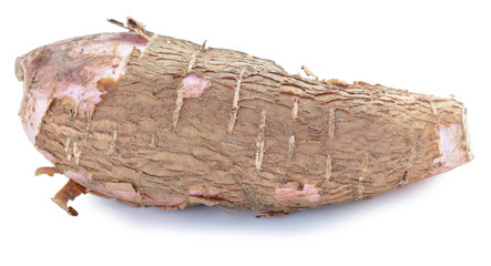 whole manioc (cassava) isolated on white background