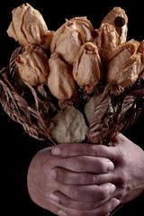 hands dirty and dried roses