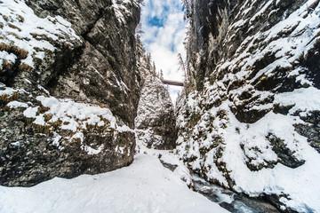 Canyon nella neve