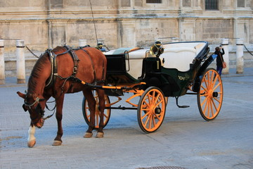 horse and traditional tourist carriage in Sevilla Spain
