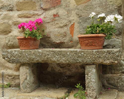 flowerpots with colorful geranium plants in ceramic boxes