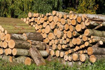 Holzpolter Holzstapel