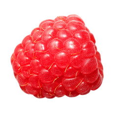 Raspberry Fruit, isolated on white background. Macro