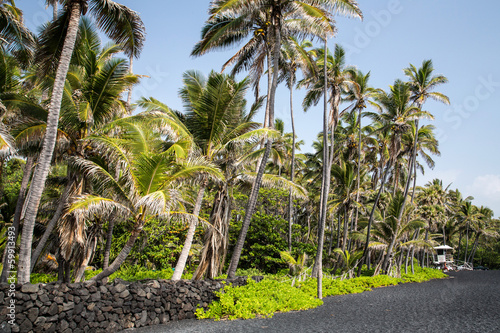 Hawaii - Big Island  - Punalu'u Black Sand Beach