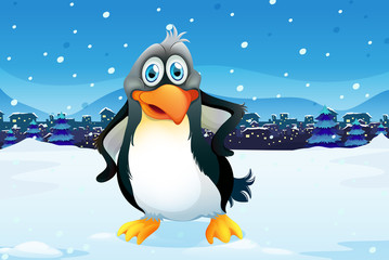 A penguin across the village