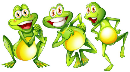 Three smiling frogs