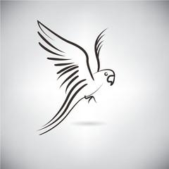 falcon, sketch line