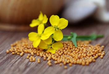Mustard flowers with mushroom