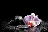 Orchid flower with zen stones on black background - 59920406
