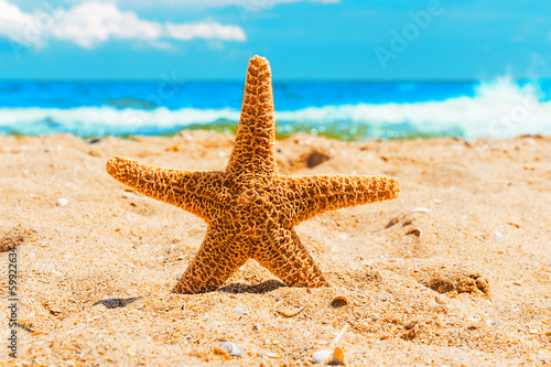 Starfish in the sand at the beach - 59922634