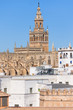 Cathedral of Saint Mary of the See in Seville