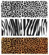 Animal Skin Pattern set of leopard zebra, panter
