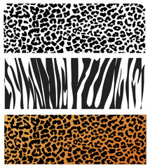 Animal Skin Pattern set of leopard zebra, panter