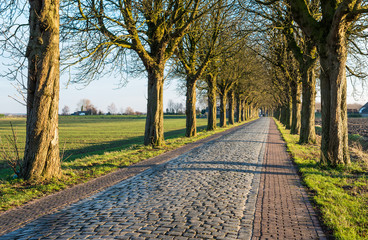 Historic road paved with cobblestones