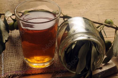 Infuso di foglie d'olivo