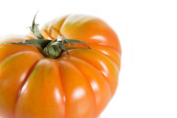 Tomato Raf