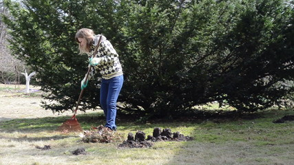 woman raking leaves in pile next to the molehills