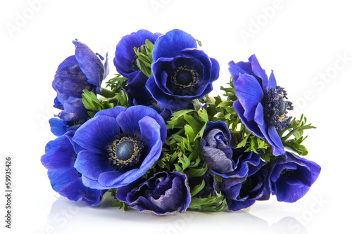 Bouquet blue Anemones