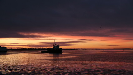 Tug and Barge, Fraser River First Light