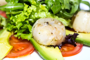 scallops grilled with avocado and tomatoes