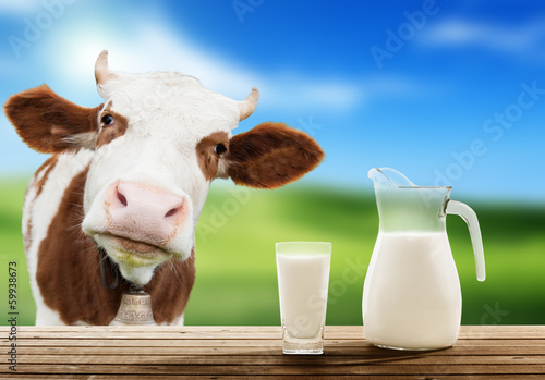 cow and milk - 59938673