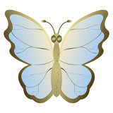 Butterfly on a white background. Vector illustration. EPS10.
