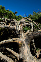 Blue sky Scenic Landscape Appalachian Mountains
