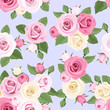 Pink and white roses on blue. Vector seamless pattern.